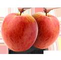 Apple Kashmir